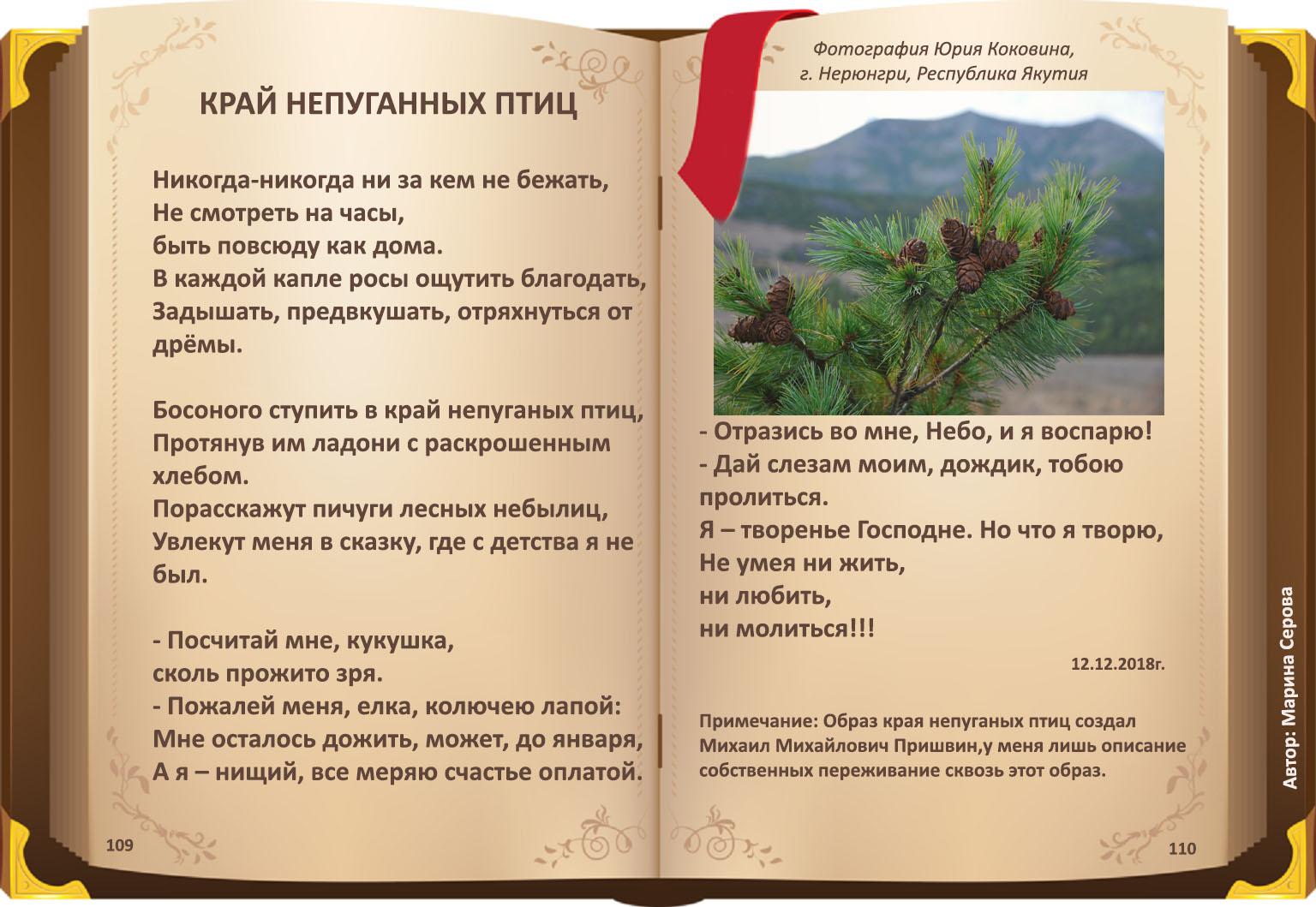 стихи марины серовой, стихи о смысле жизни